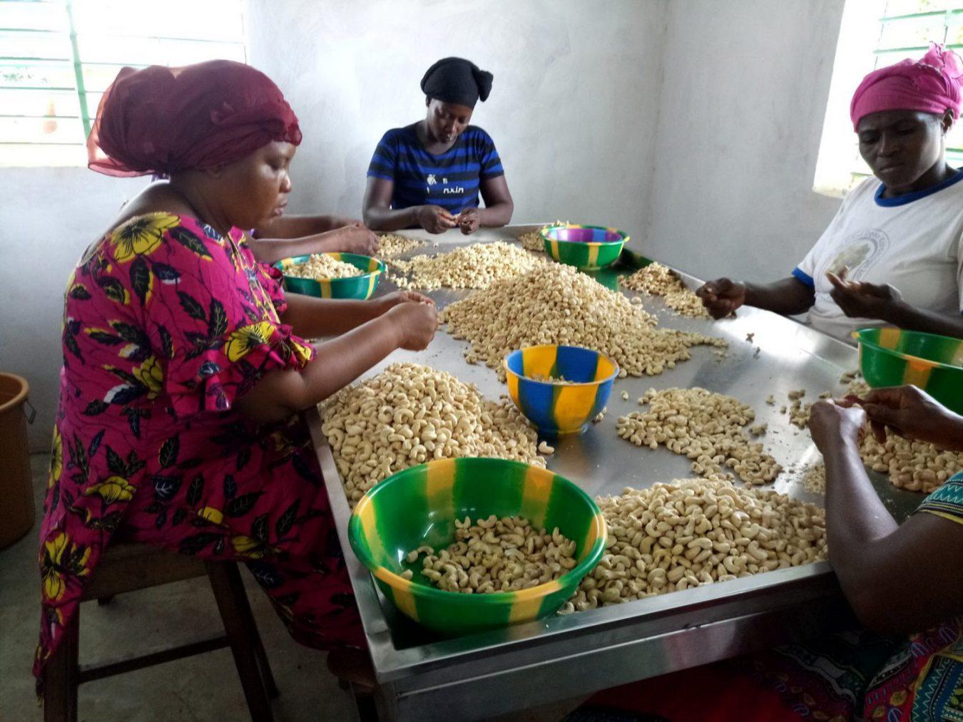 Femmes qui préparent des cajous