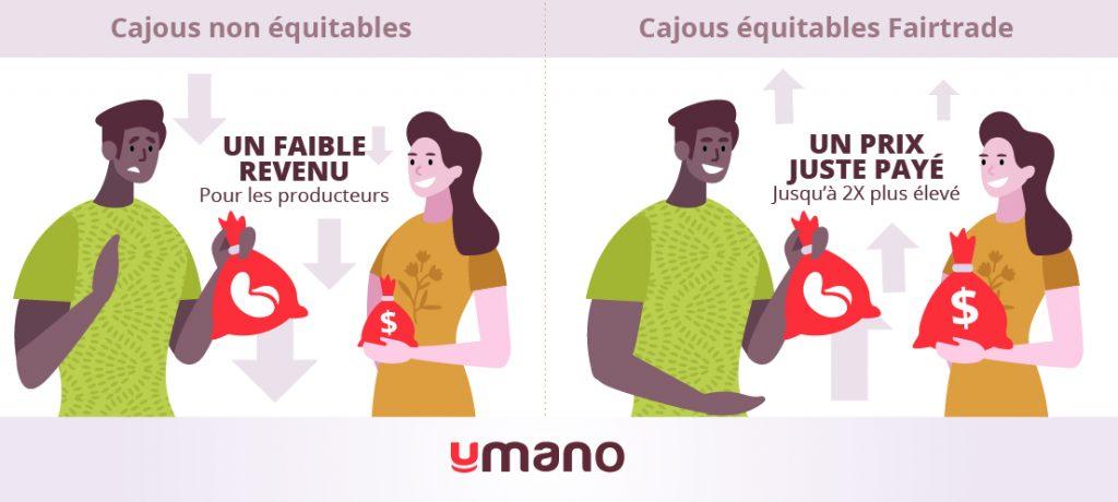 Infographie illustrant que les producteurs de cajous équitables reçoivent un prix juste pour leur production.